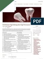 Perbedaan Gigi Sulung dan Gigi Permanen « Dentistry Molar