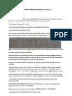 COMPOZITIE ARHITECTURALA c1