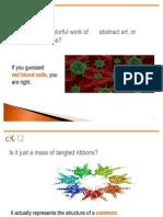 CK-12 Biology Flexbook