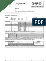 FPC-01-03- rev.3-1- FISA INSTALATIEI
