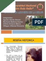 Expo de Selva