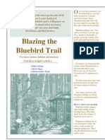 Blazing the Bluebird Trail