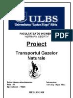 Proiect --- Transportul Gazelor Naturale II ( Parte Scrisa)