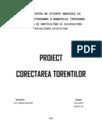 Proiect Torenti Pavel Adrian
