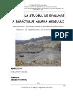 53451_RAPORT STUDIU IMPACT SC KAUFOF SRL-Extinderea Carierei de are Valea Manastirii