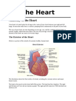 A&P of Heart and Kidneys