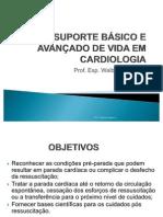 SUPORTE BÁSICO E AVANÇADO DE VIDA 2010