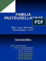Pasteurellaceae I
