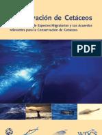 WDCS Brochure Sp