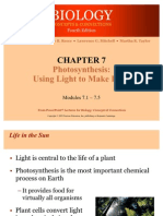 Ch 7 Photosynthesis Using Light to Make Food