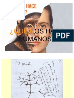 evolución humana.Unha interpretación