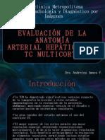 Anatomía Arterial Hepática (Andre)