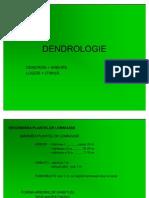 Curs 1 Dendrologie