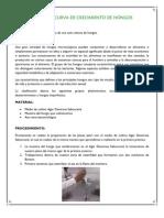 Practica de Microbiologia General--CURVA de CRECIMIENTO de HONGOS