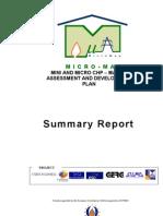 MICROMAP Publish Able Report