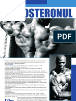Articol Proliferomania.ro - Testosteronul