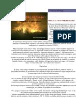 La Vibración del Fuego Sahumerios y hierbas para tal