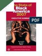 2007 Nul Soba exc summary