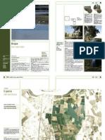ORME #1 | LookOut | Il Parco Urbano di Ferrara