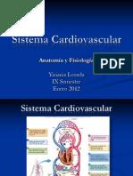 Sistema Cardiovascular-Anat y Fis