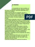 MEJORAMIENTO DE PRADERAS