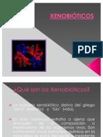 XENOBIOTICOS