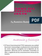 6610041-Sindrome-Del-Intestino-Corto[1]
