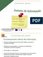Processamento  Interno de Informacao