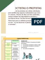 Protistas_D