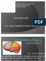 3.Bases Neurofisiologicas Del Comport a Mien To