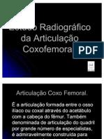 articulação coxo femural