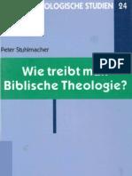 BTS 24 Wie Treibt Man Biblische Theologie