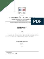 Rapport sur le Financement des Comités d'Entreprise (Rapport Perruchot)