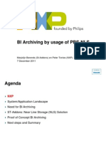 BI Archiving by Usage of PBS-NLS
