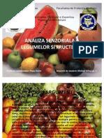 Analiza Senzoriala a Fructelor Si a Legumelor