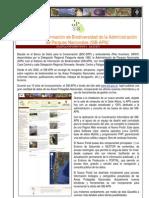Gacetilla Informativa del SIB de APN n.1.-2011