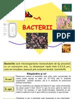 Microbiologie - Bacterii