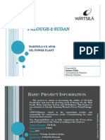 Project Report Palouge-2_Sudan