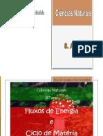 Fluxo de Energia_ciclo Da Materia_2011_FV