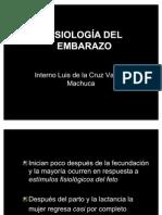 Fisiologia Del Embarazo4510