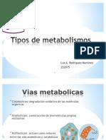 Tipos de Vias Metabolic As