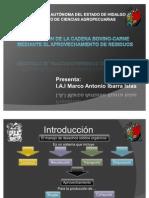 Integracion de La Cadena Bovino-carne Mediante El Aprovechamiento
