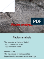 Facies Analysis
