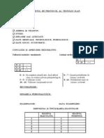 Protocol Test.desenul Persoanei