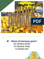 Banana Students