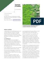Alfalfa PDF