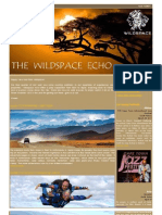 The Wildspace Echo