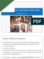 4_Teoria_sistemas_familiares
