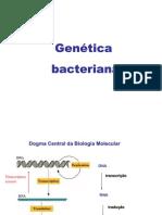 aula - genética bacteriana
