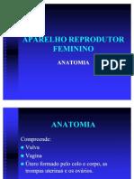 APARELHOREPRODUTORFEMININO